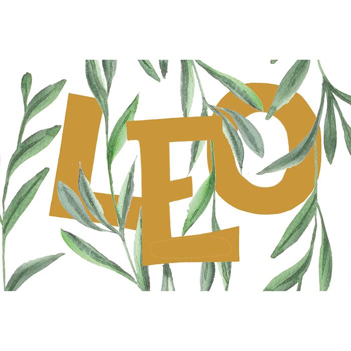 Geboortekaart Leo